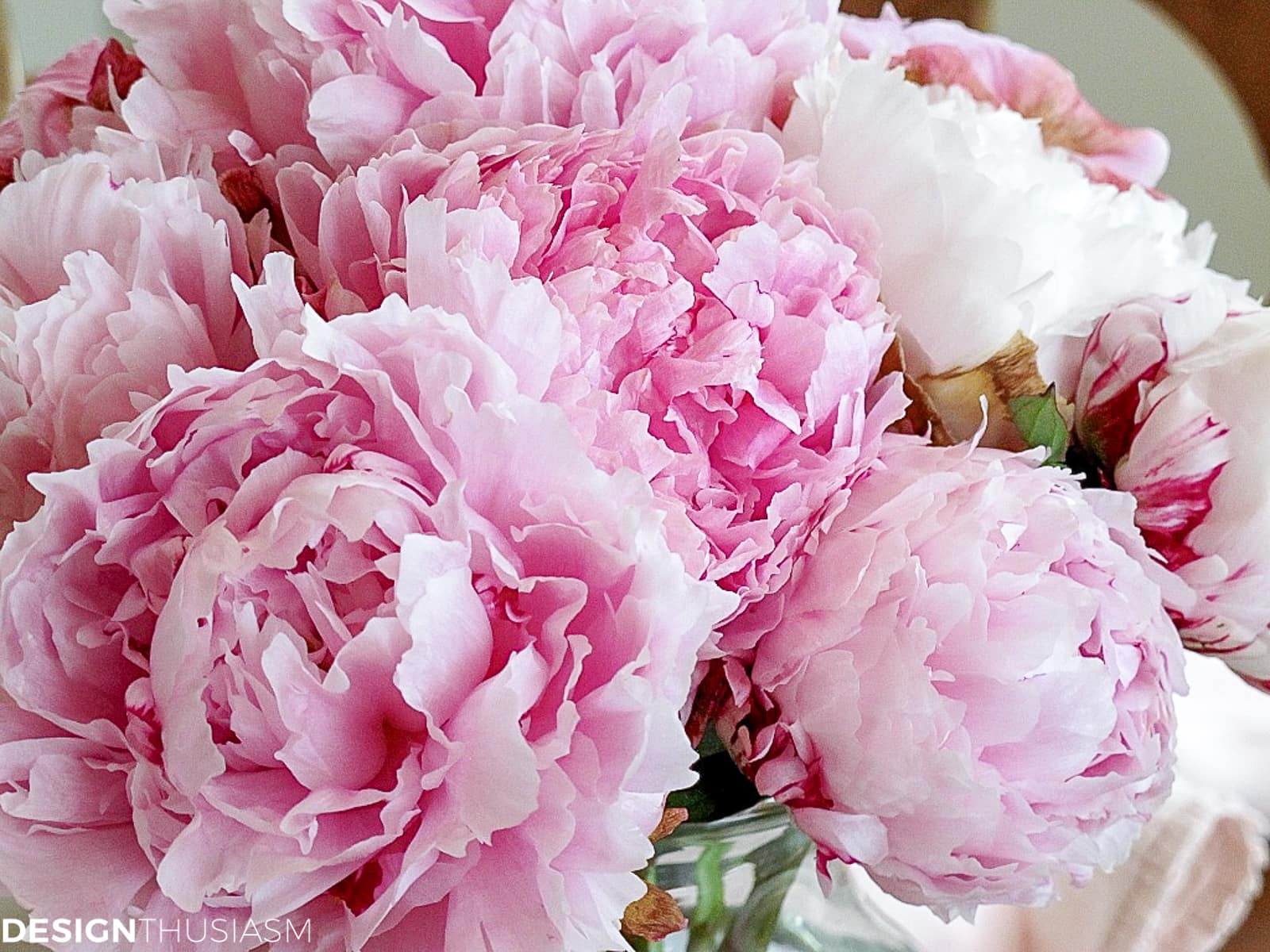 peonies for table setting for lunch