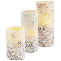 Birch tree pillars P1
