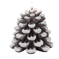 amazon snow dusted candle