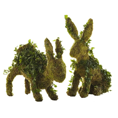 FC Spring Rabbit Topiaries