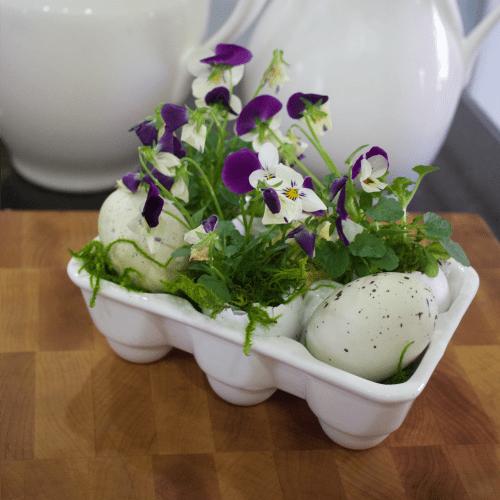 Eggshell-Planter-Square
