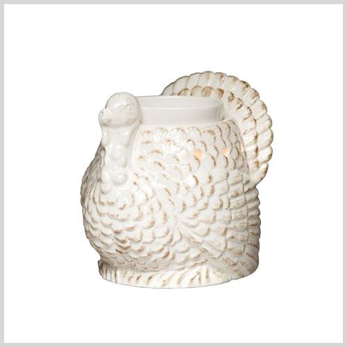 turkey pitcher