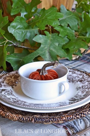 velvet-pumpkin-in-bowl-fall-table-setting_300