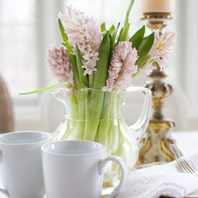Home Style Saturdays | Pink Hyacinths and Room Updates Coming