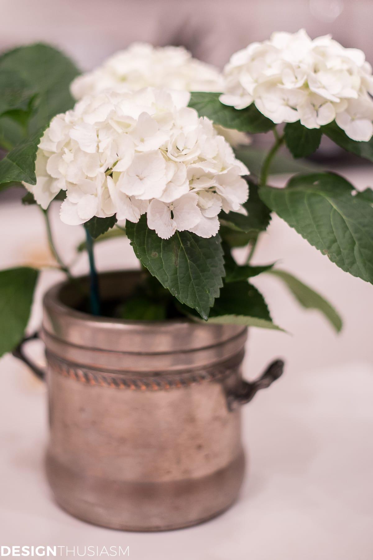 White hydrangea - designthusiasm.com