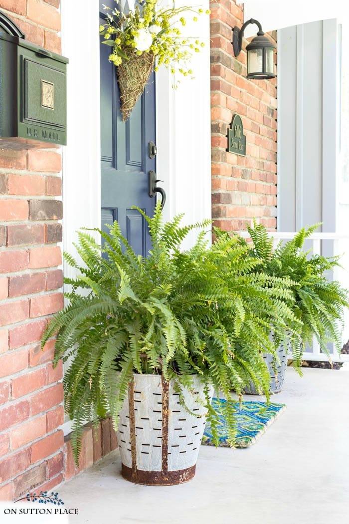 Olive Bucket Planters from On Sutton Place