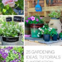25 Gardening Ideas, Tutorials and Inspiration