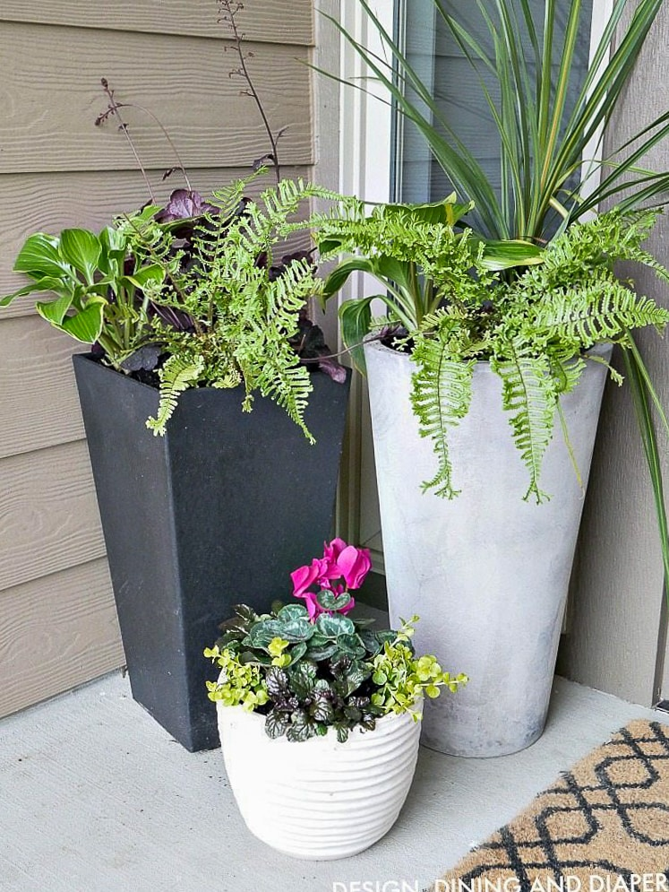 DIY FRONT PORCH PLANTER IDEAS - Taryn Whiteaker