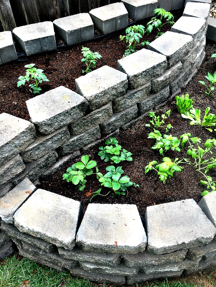 How To Build A Raised Garden with Pavers - Inspiration for Moms