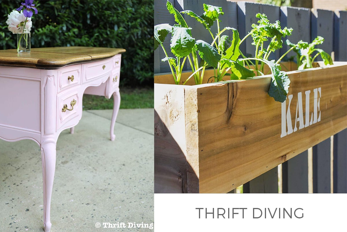 Thrift Diving FEATURE