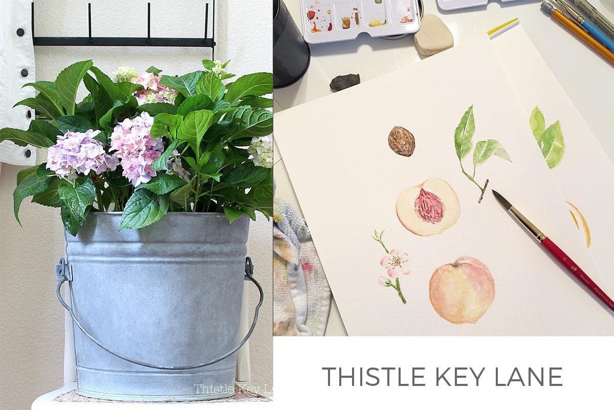 thistle key lane FEATURE