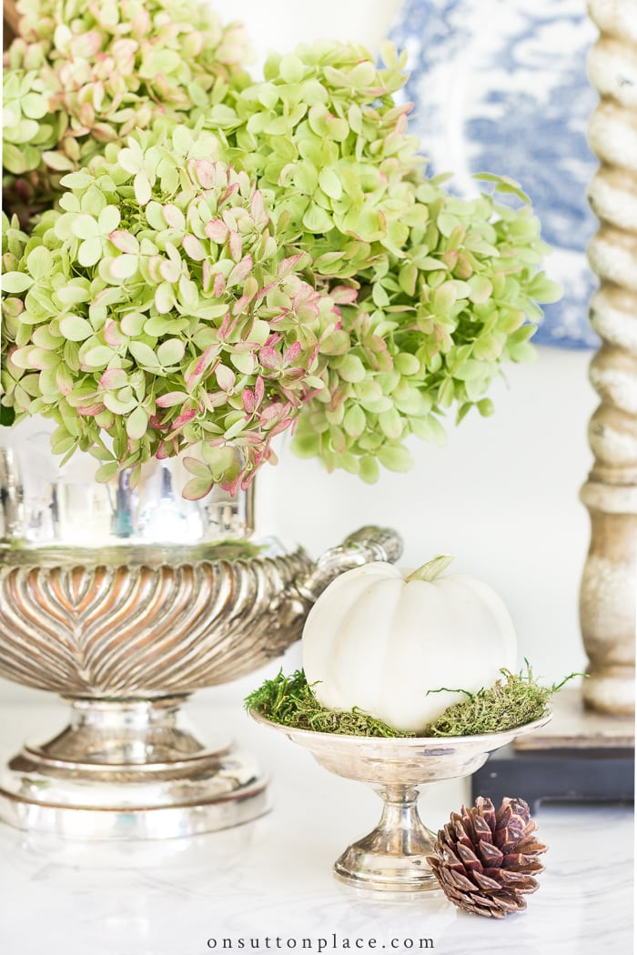 Drying Limelight Hydrangeas from On Sutton Place