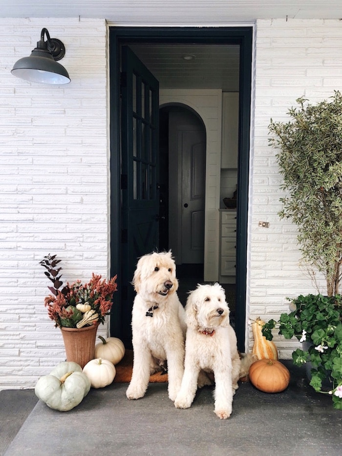 Simple Ways to Create a Welcoming Fall Porch