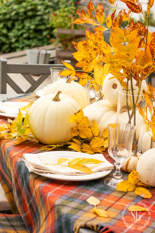 GOLDEN-LEAVES-AND-TARTAN-TABLESCAPE-WHITE-pumpkinsstonegableblog