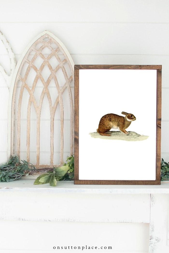 Vintage Rabbit Printables from On Sutton Place
