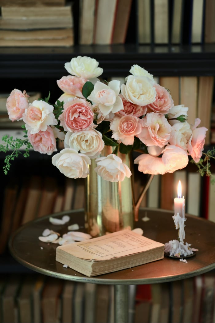 Peach roses in front of bookcase