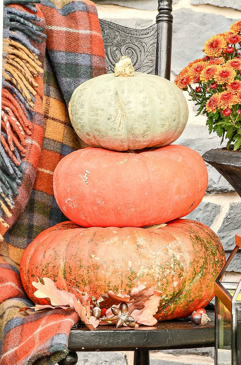 PUMPKINS-STACKED