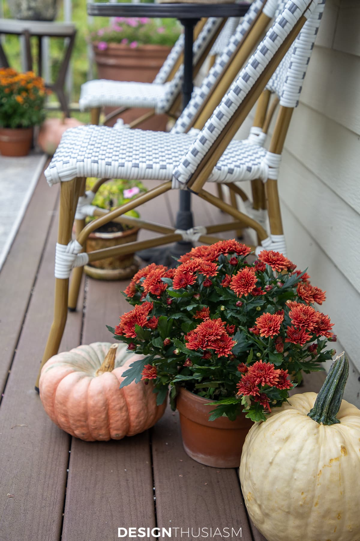 mums and pumpkins on the fall patio