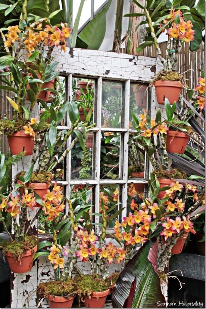 biltmore garden tour