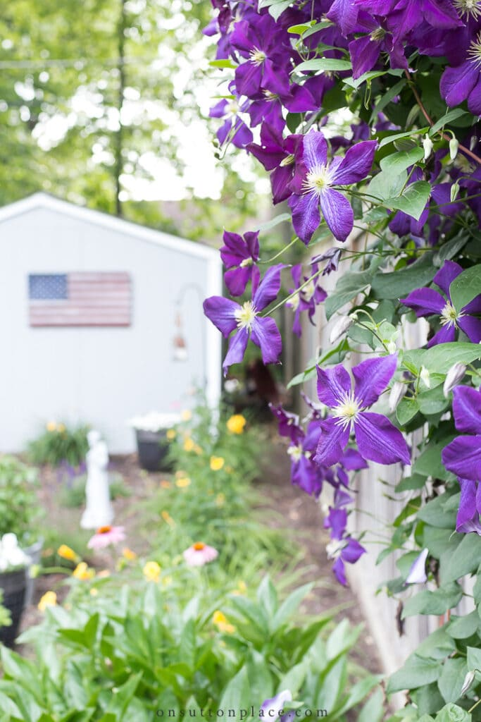 Elements of a Cottage Garden from On Sutton Place