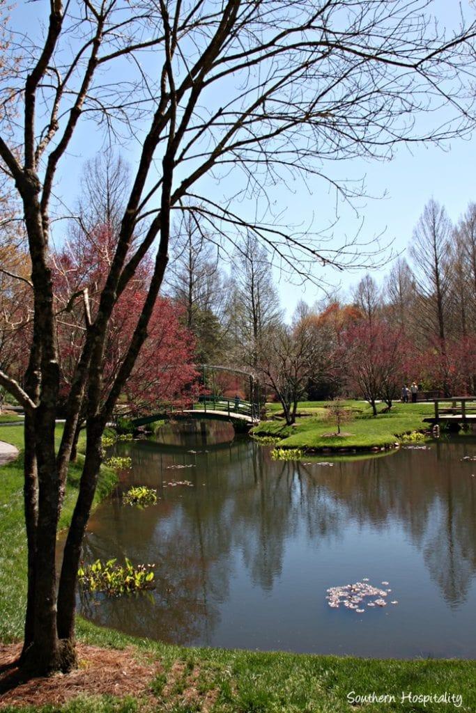 Gibbs-Gardens Blooms