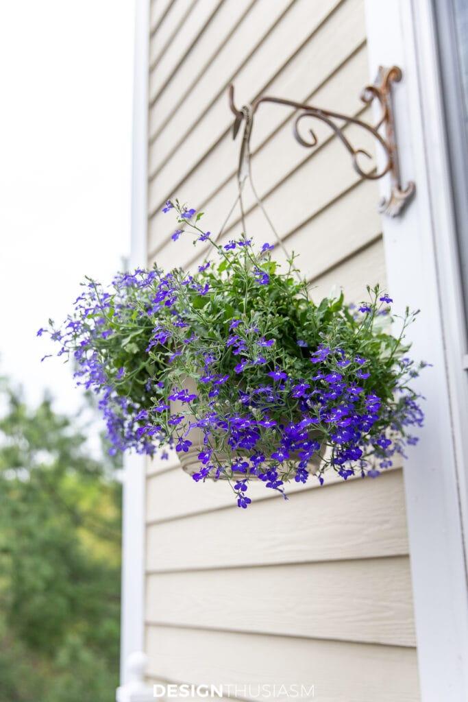 patio decor hanging plants