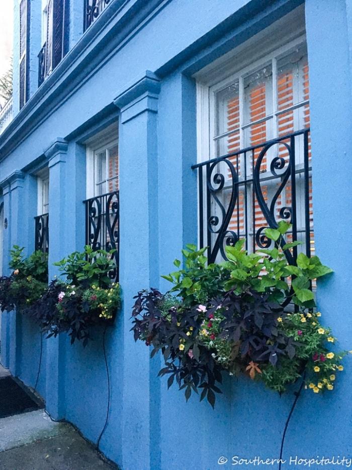 window boxes doors gates of charlestonSH