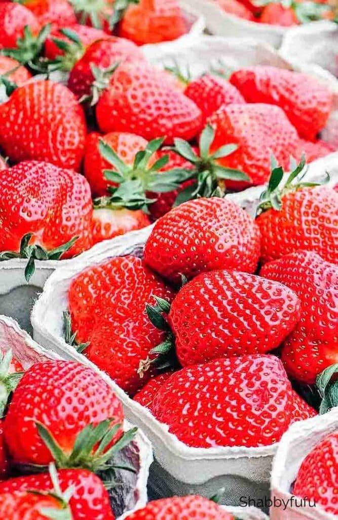 Strawberry Cobble With Bisquick - Shabbyfufu